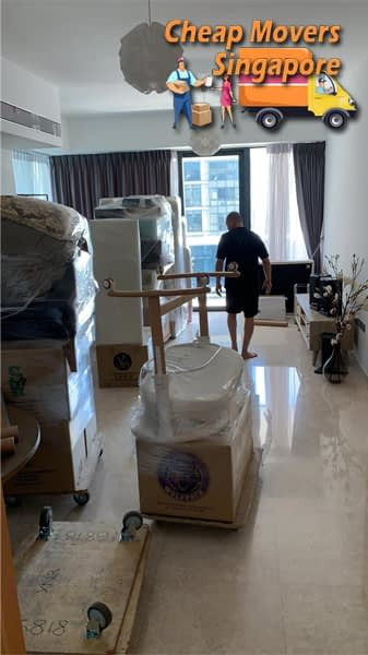 cheap movers