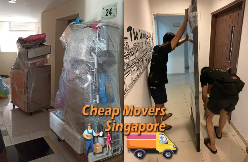 House Moving Service from Macpherson Rd to Brighton Crescent